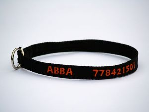 Černý popruh 1,6 cm Paradise Collar